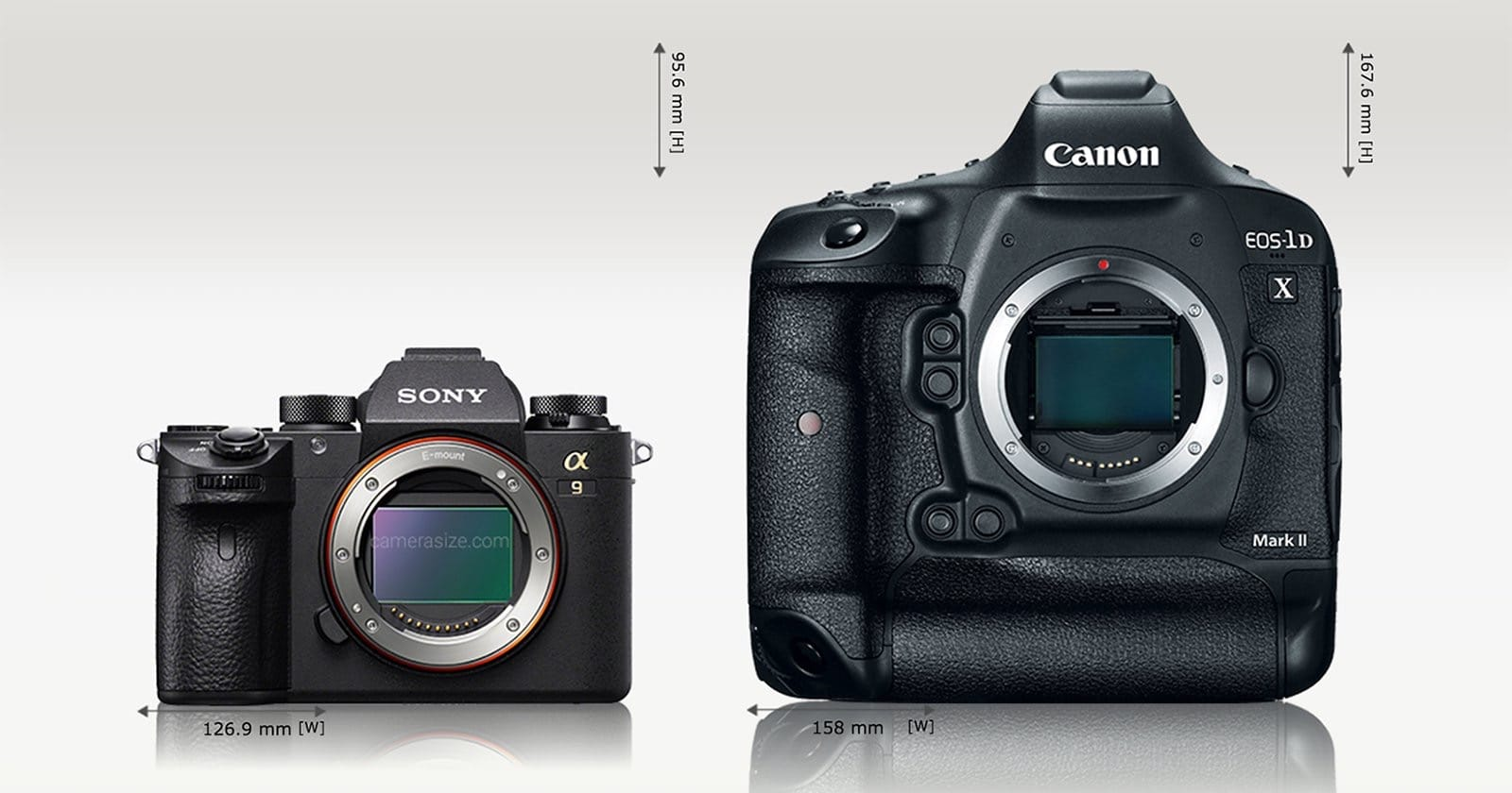Size Comparison: Sony a9 vs a7R II, Canon 5D Mark IV, and ...